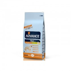 Advance Adult Maxi Junior