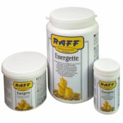 Papilla de cria Energette Raff
