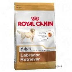 Royal Canin Labrador Retriever Adulto