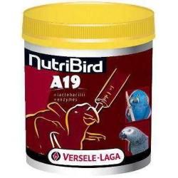 Nutribird Papilla A19