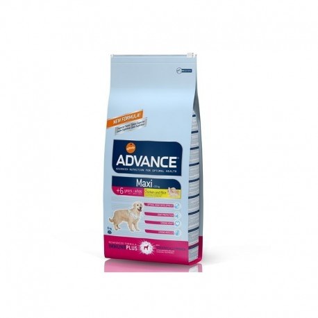 Advance Senior  Maxi +6