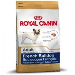 Royal Canin Bulldog Frances Adulto
