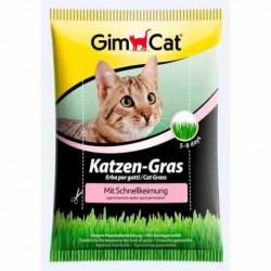 Hierba para gatos germinación rápida