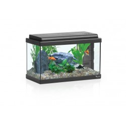 Acuario Advance Led 40